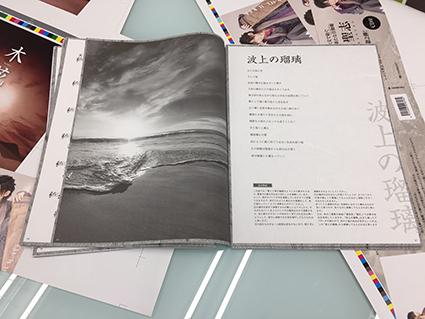 IMG_9652-5.jpg